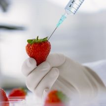 Chemistry and Technology (Specialization in Food and Biochemical Technology)