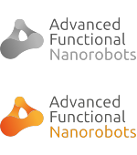 Advanced Functional Nanorobots