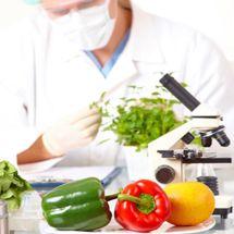 Potraviny a přírodní produkty