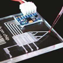Nano a mikrotechnologie v chemickém inženýrství
