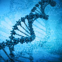 Biochemie a biotechnologie