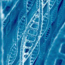 Forenzní biologická analýza