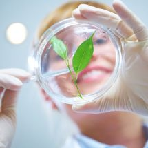 Biotechnologie léčiv